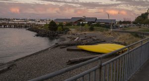Seacrest_Park_Seattle_WA_Diving