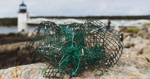 Broken-Lobster-Pot1200x636-300x159