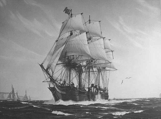 SS-Savannah